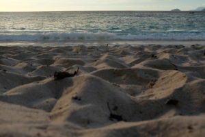 Four-Season-Seychellen-Beach